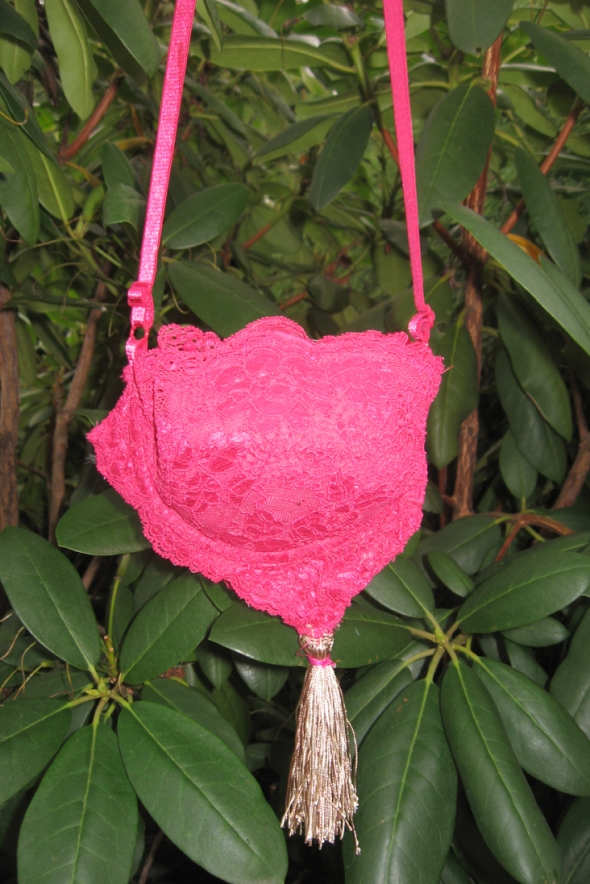 A very lacy Vistoria Secret Bra purse